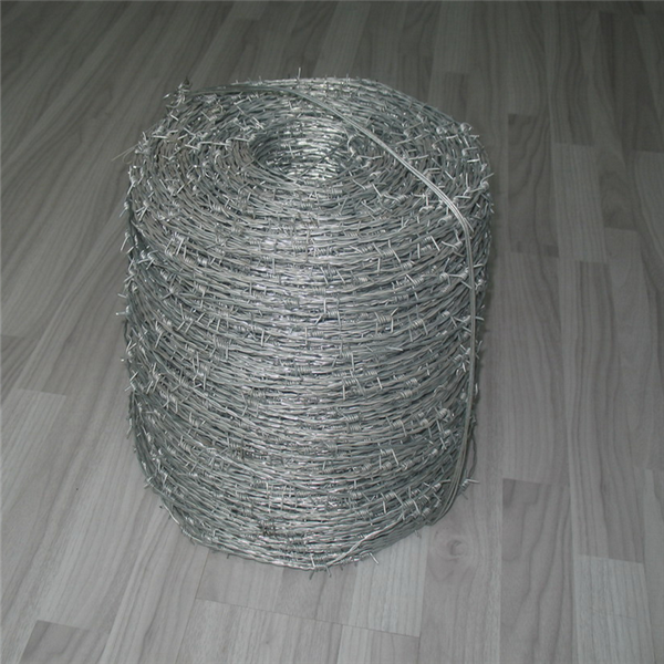 barbed wire for sale in european market