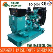 Высокое качество Известный производитель дизель-генератор 24KW / 30KVA 50Hz