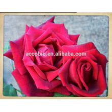 Fabricante de fornecimento de alimentos comestível extrato de rosa orgânica, extrato de rosa orgânica, orgânica rosa