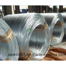 0.4mm to 6.30mm Galvanized High Carbon Spring Steel Wire