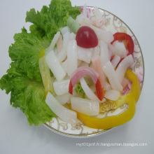 Pâte instantanée à faible teneur en calories Organic Shirataki Penne