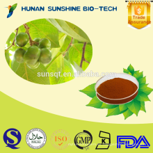100% Natural Pygeum Africanum Extracto 2.5% / 7% / 13% Phytosterol CAS: 83-46-5