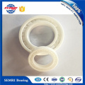 High Precision OEM Plastic Bearing (608) Competitive Price