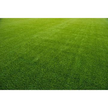 34mm Artificial Grass for Court
