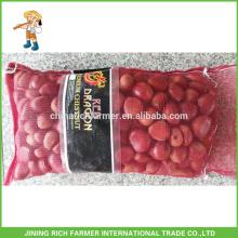 Fresh Rich Farmer Chestnut