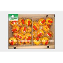 2011 Китайский большой мандарин в коробке