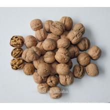 Shanxi Fenyang Noix ordinaires en coquille, noix crues, peau mince