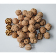 Shanxi Fenyang Ordinary Walnuts in Shell,raw walnuts,Thin skin
