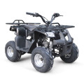 EPA 125CC ATV QUAD BIKE