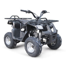 EPA 125CC ATV BICI DEL PATIO
