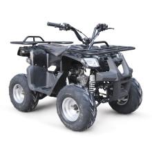 EPA 125CC ATV QUAD BIKE