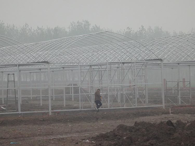 Multi Span Greenhouse Frame