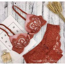 El cordón atractivo del diseño especial empuja suben el sujetador tradicional de las mujeres y el sistema breve