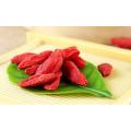 Import von Bio-Goji-Beeren