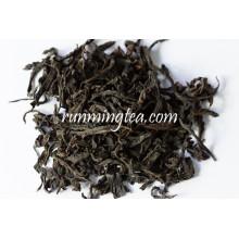 Chá de Oolong chinês da rocha de Fujian Wuyi
