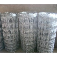 Galvanized Iron Knotted Wire Mesh Field Fence (anjia-525)