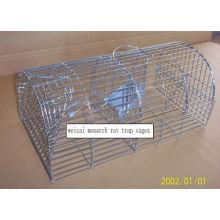 1st Grade Cat Trap Cage