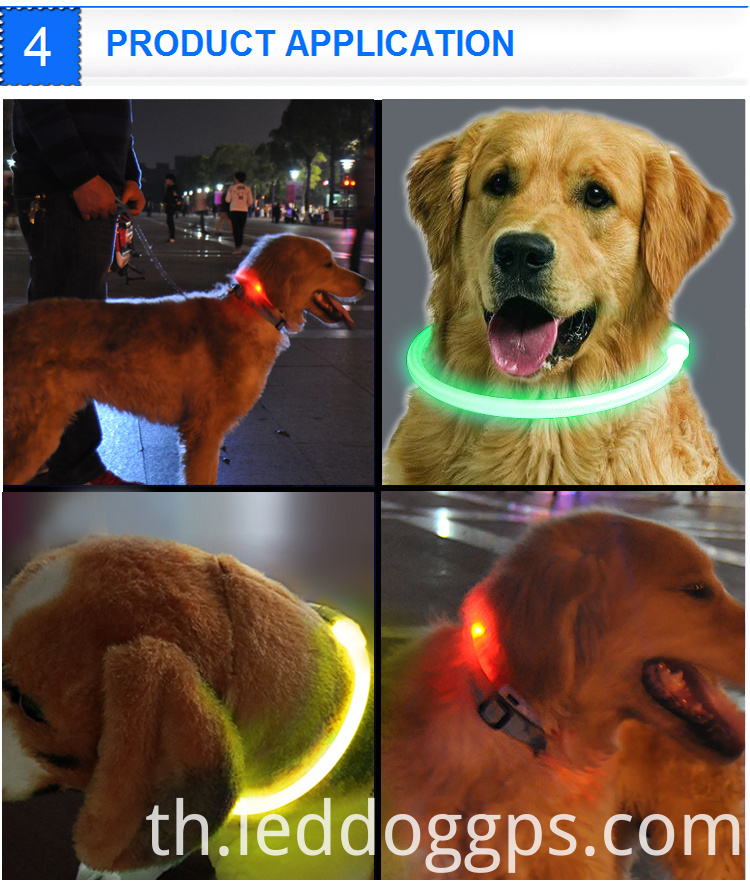 led collar dog