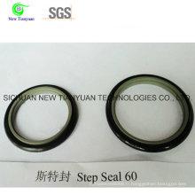 Joint d'étanchéité OEM Kfm / PTFE pour compresseur CNG