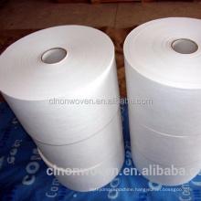 PLA spunbond non woven biodegradable fabric ( CL0106)