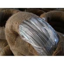 Encuadernación de alambre galvanizado en el mejor precio