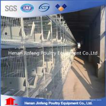Équipement de ferme de volaille d'oeufs de poulet de cadre en acier durable