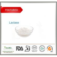 Lactobacillus paracasei para suplemento de saúde