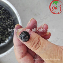 Black Goji Berry Extract wholesale black wolfberry extract