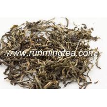 Sacos de chá verde de jasmim