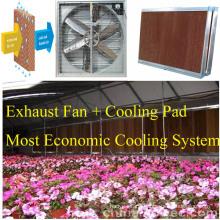 CE ISO Certificated Siemens Motor Fan for Greenhouse
