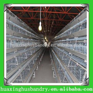 China popular y de buena calidad barato gallinero
