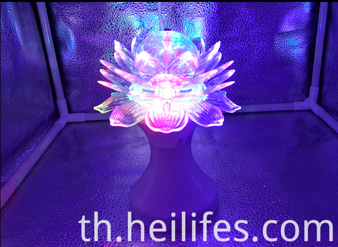 Toys for Gift of Lotus LED Lights