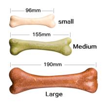 Gros os de chien avec différents styles