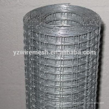 Electro galvanized welded wire mesh/welded wiremesh factory