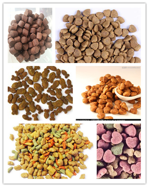 pet food sample