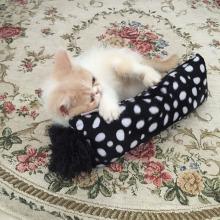 Produto de estimação atacado Cat Toy com Catnip Cazy Jogando Catnip Brinquedo Gatinho Brinquedo
