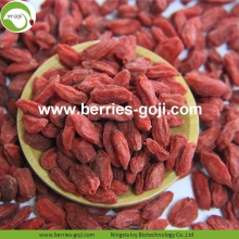 Fuente de la fábrica Fruit Nutrition Frutos secos Goji Berries