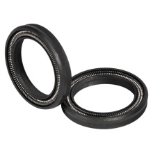 PTFE Spring Energized Seals for Engine Parts Made in China