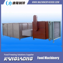 New Brand fruit slice drying machine