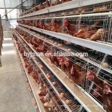 Слой птицы клетка цыпленка батареи для Нигерии, Кении ферма в Южной Африке Танзания Уганда(в whatsapp: +86 13331359638)