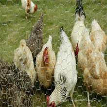 Hexagonal Wire Mesh for Farm Animal Useing