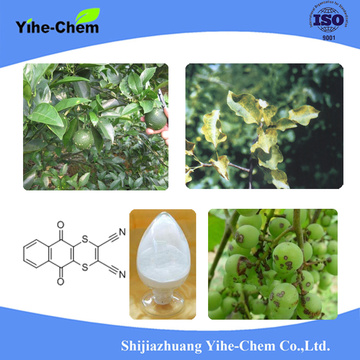 Dithianon excellent pesticide agrochimique