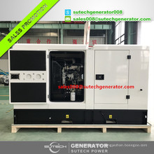 50kva diesel genset 40kw generator set price with Perkin engine 1104A-44TG1