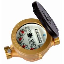 Einzelne Jet Nassreinigung Wasserzähler (SJ-WDC)
