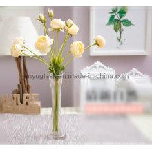 Vases en verre clair et élevé; Vases à cylindre clair