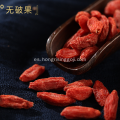 280Grains / 50g Goji Berry Dried Wolfberry