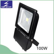 100W 3000-6500k Eclairage étanche à LED pour cour arrière
