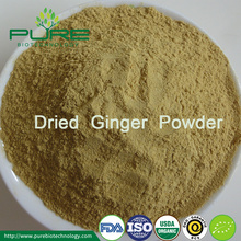 Dehydrerad Ginger Powder Wholesale