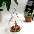 Terrario de vidrio Contenedor de vidrio geométrico terrario
