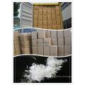 12mm Micro PP Polypropylen Faser Virgin Monofilament PP Faser Asphalt Beton Faser,